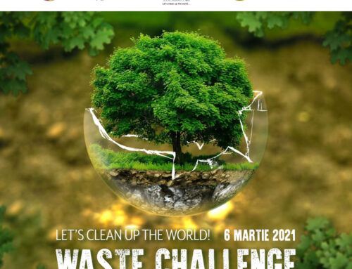 Waste Challenge – Seven Stairs Canyon